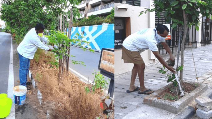 Volunteers, Kishore and Aravind, water the plants in Vasanth Nagar every alternate day in the evenings. Pic: Rajkumar Dugar
