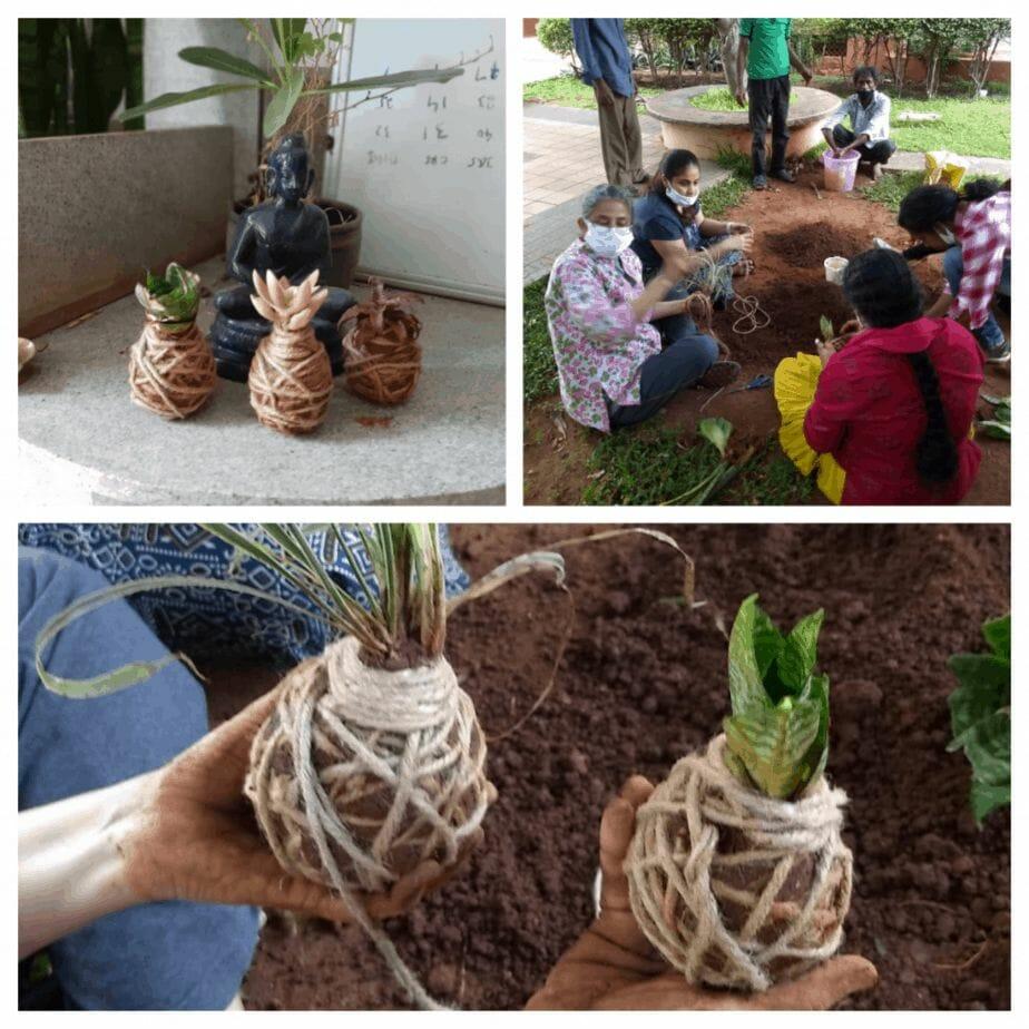 Soil and Kokedama workshop