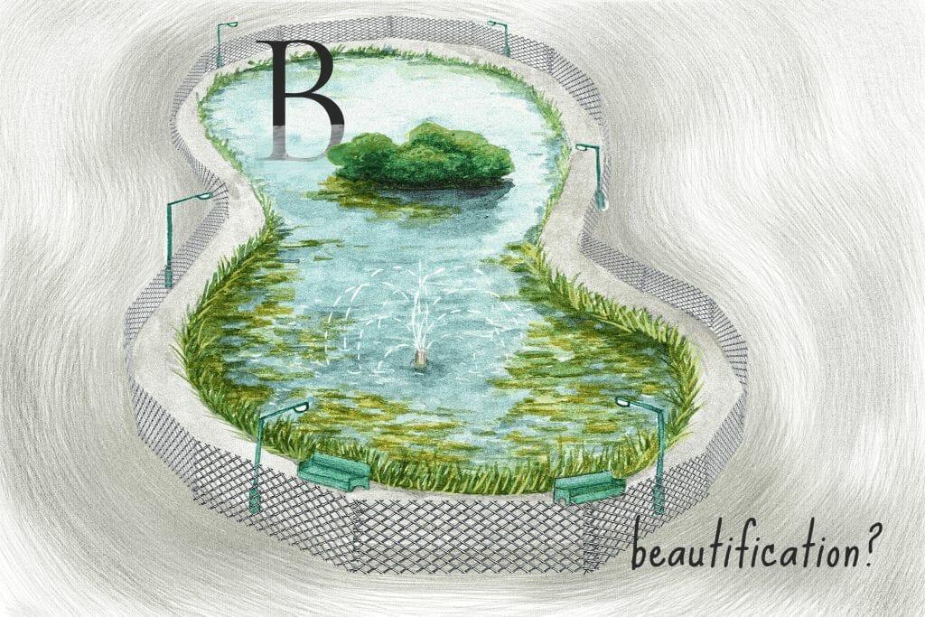 lake beautification
