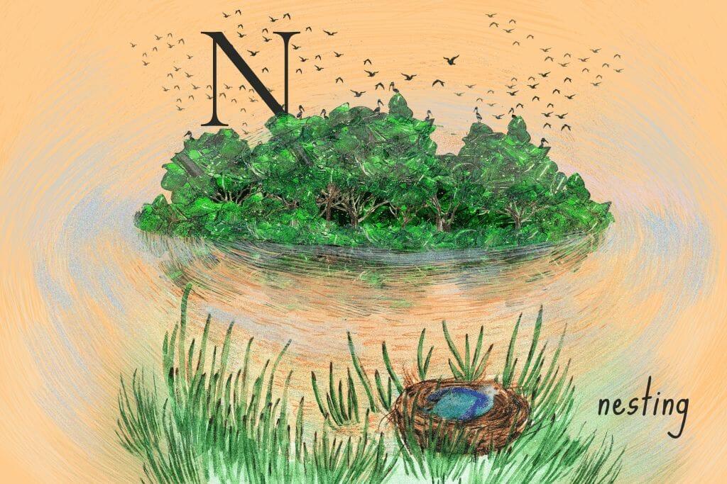nesting in lakes