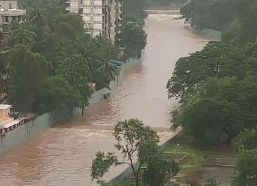 Flooding in the Sanjay Gandhi National Park