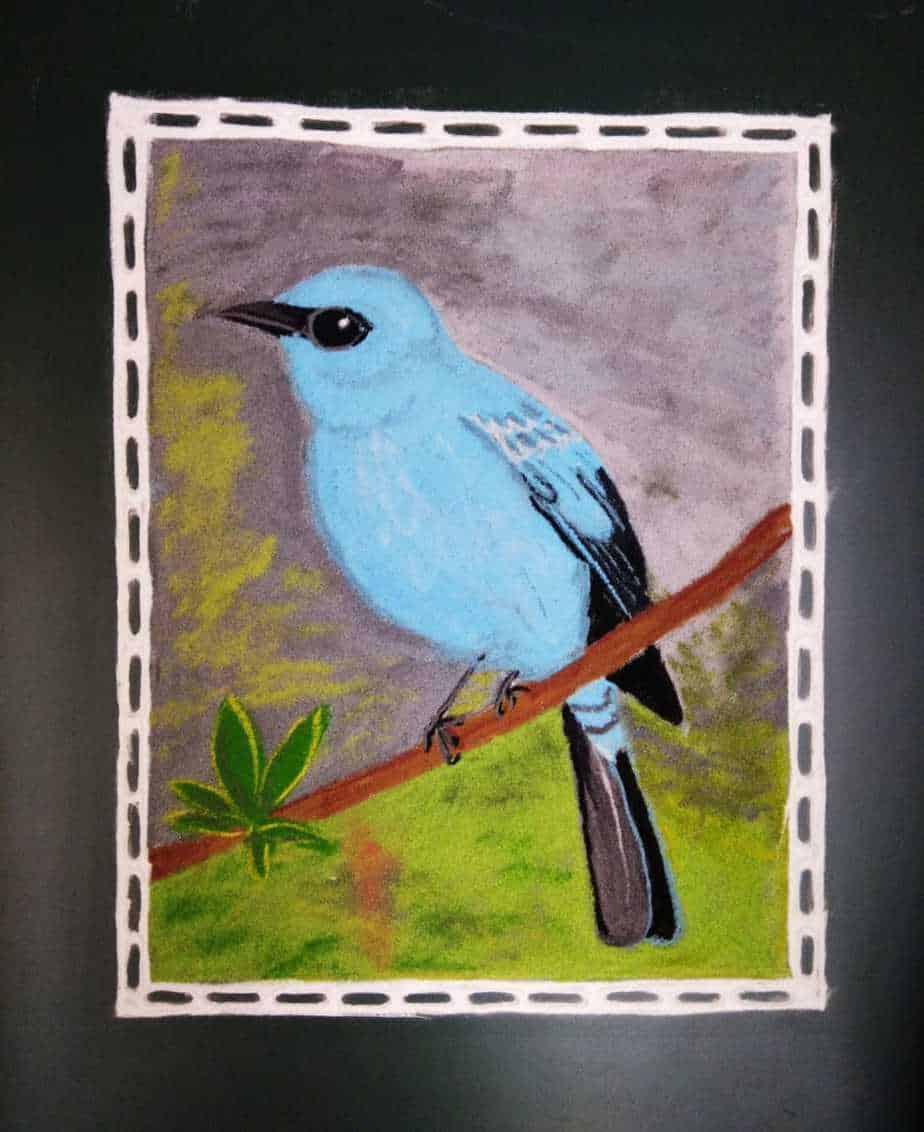 Ashtami: Sky Blue: Verditer Flycatcher