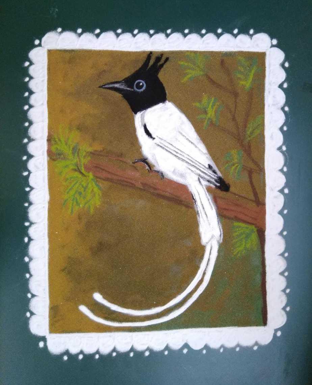 Sashti: White: Indian Paradise Flycatcher