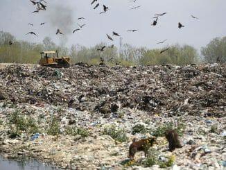 waste management issues in srinagar