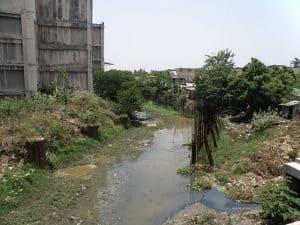A stretch of the Buckingham Canal near Thiruvanmiyur. Photo: Prateek Karandikar, Wikimedia