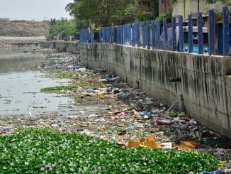Waste contamination of Buckingham Canal
