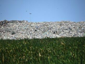 garbage in pallikaranai marshland