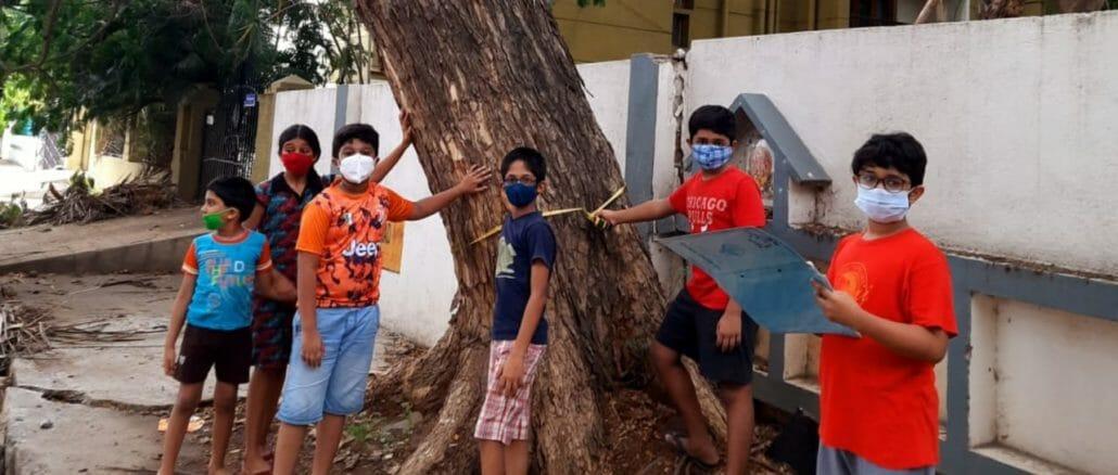 Kids in Anna Nagar tree survey