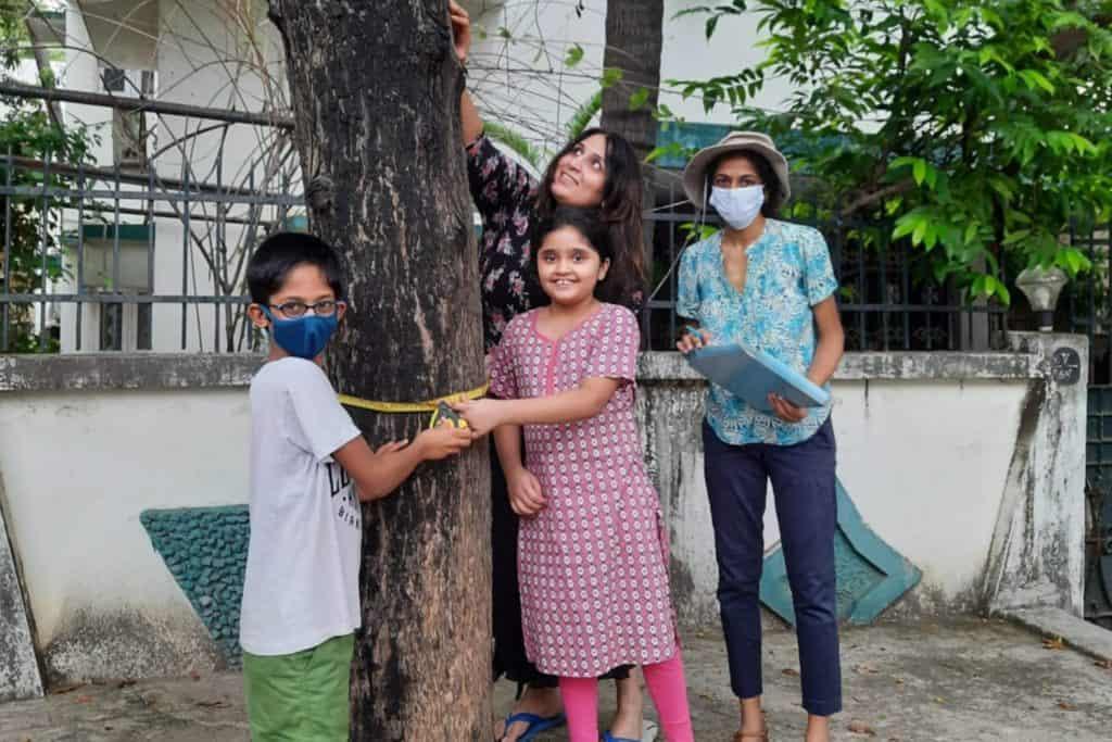 tree survey by nizhal
