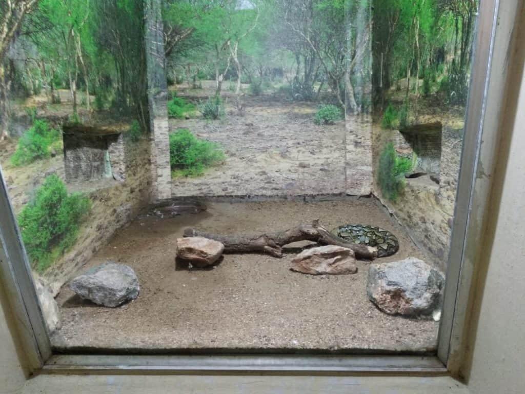 Snake enclosure, snake park